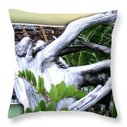 Driftwood Escape Throw Pillow
