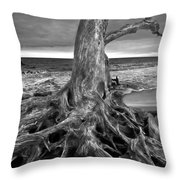 Driftwood On Jekyll Island Black And White Throw Pillow