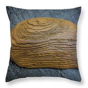 Driftwood On Slate Throw Pillow