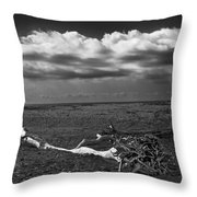 Driftwood On The Beach At Whitefish Point Throw Pillow