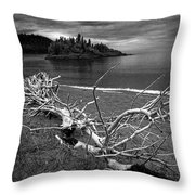 Driftwood On The Shore Near Wawa Ontario Canada Throw Pillow