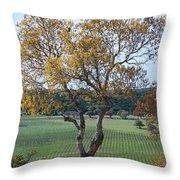 Driftwood Texas Throw Pillow