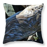 Driftwood Texture And Shadows Throw Pillow