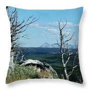 Gnarled Trees And Divide Mountain Throw Pillow
