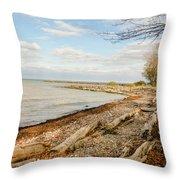 Driftwood On Shore Throw Pillow