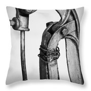 Drink From The Well Throw Pillow
