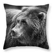 Drinking Grizzly Bear Black And White Throw Pillow