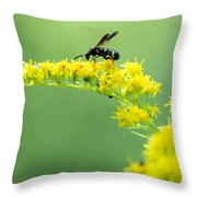 Drinking Up Flower Nectar Throw Pillow