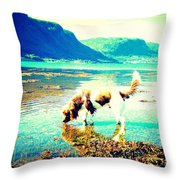 Springer Spaniel Drinking Water From The Big Blue Sea  Throw Pillow