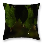 Dripping From The Green Throw Pillow
