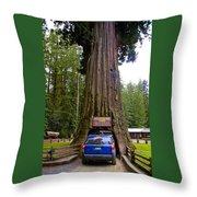 Drive Through Redwood Tree Throw Pillow
