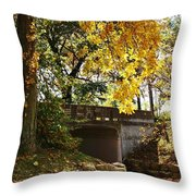 Drive Through Sinnissippi Park Throw Pillow