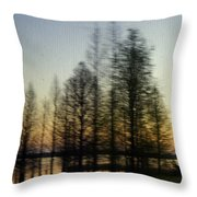 Driving By Throw Pillow