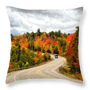 Driving Through Algonquin Park - V2 Throw Pillow