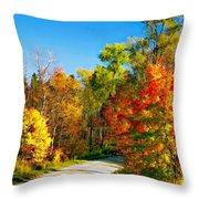 Driving Through Autumn Throw Pillow