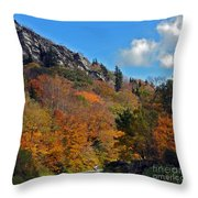 Driving Through Autumn's Beauty   Throw Pillow