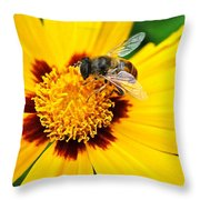 Drone Bee Throw Pillow