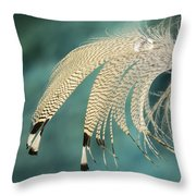Droopy Feather Throw Pillow