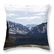 Drop Off Throw Pillow