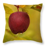 Droplets From A Red Apple   Throw Pillow