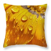 Droplets Of Gold Throw Pillow