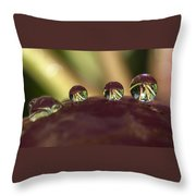Droplets On An Apple Throw Pillow
