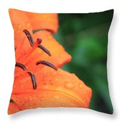 Droplets On Tiger Lily Throw Pillow