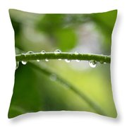 Drops In Line Throw Pillow