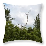 Druid Dance Throw Pillow