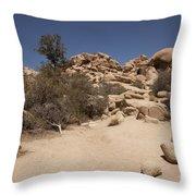 Dry Air Throw Pillow
