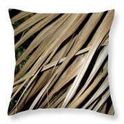 Dry Palm Leaves Throw Pillow