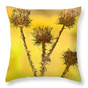 Dry Brown Thistle Throw Pillow