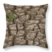 Dry Cracked Mud  Throw Pillow