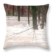 Dry Creek-but Swift Waters Throw Pillow