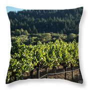 Dry Creek Road Vineyard Throw Pillow