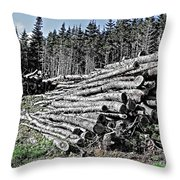 Dry Firewood Throw Pillow