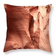 Dry Fork Sandstone Throw Pillow by Adam Jewell