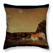 Dry Goods Throw Pillow
