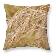 Dry Grass... Throw Pillow