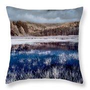 Dry Lagoon Blues Throw Pillow