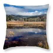 Dry Lagoon In Winter Panorama Throw Pillow