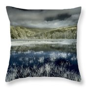 Dry Lagoon Winter Throw Pillow