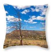 Dry Landscape Throw Pillow