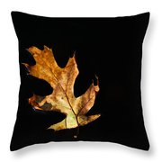 Dry On Water Throw Pillow