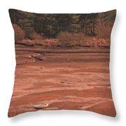 Dry Reservoir  Throw Pillow