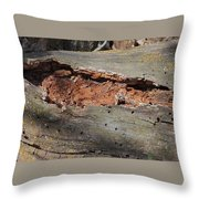 Dry Rotting Tree Throw Pillow