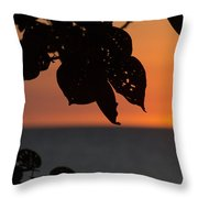 Dry Season Sunset Throw Pillow