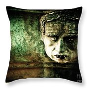 Dry Spell Throw Pillow