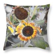 Dry Sunflowers Throw Pillow