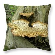 Dryads Saddle Bracket Fungi - Polyporus Squamosus Throw Pillow